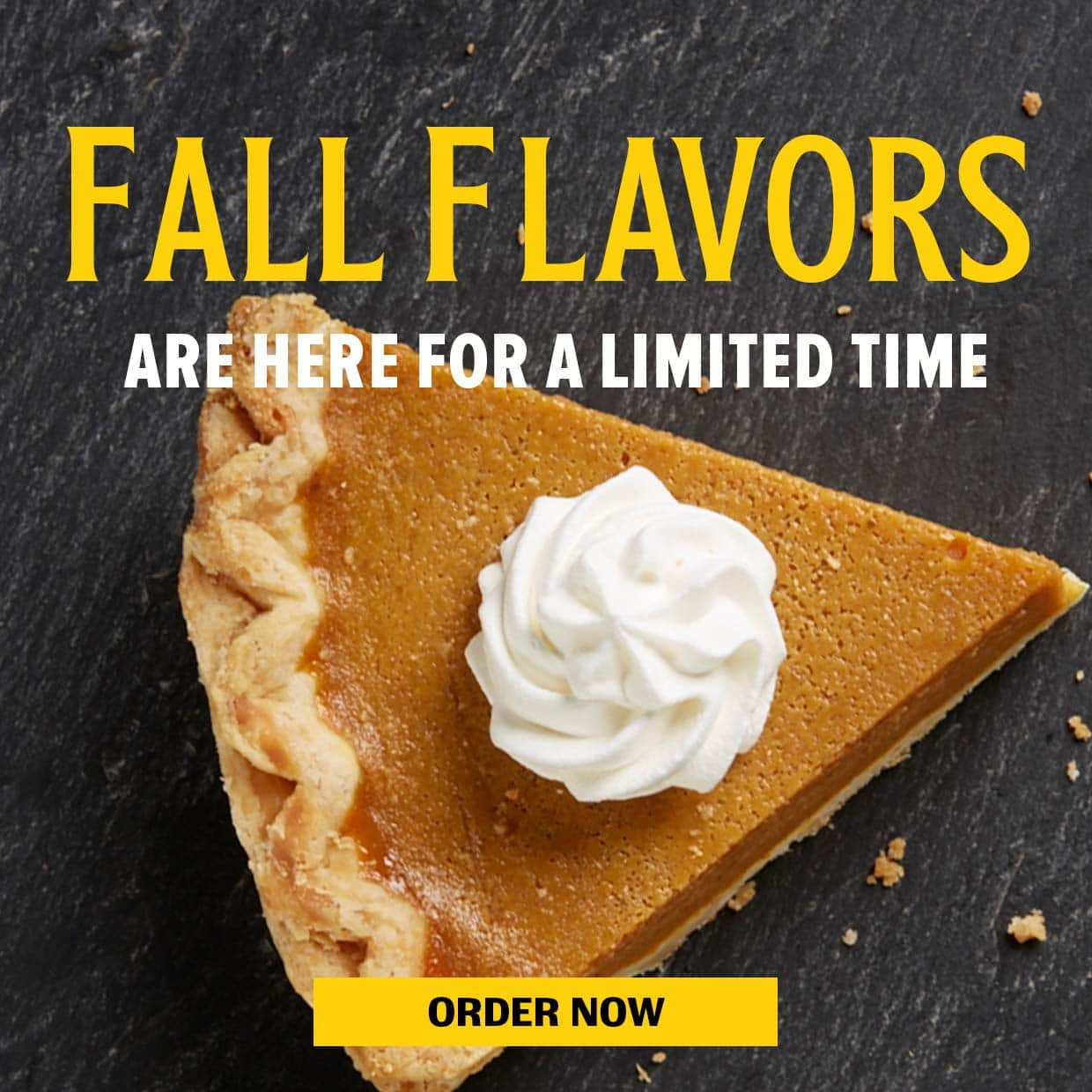 Fall Flavors are here for a limited time. Order Now